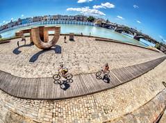 Cycling in Sunny Seville (derek.dpr) Tags: seville sevilla espana spain streetscene street streetview olympus omd em5 on1pics on1 fisheye fish boardwalk