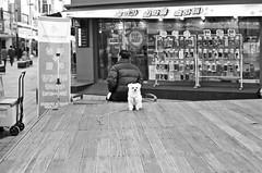 322 (HARU1231) Tags: minolta x700 primelense 50mm film analog candid street life people skorea