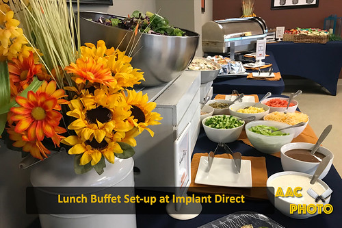 "Implant Buffet Spread • <a style=""font-size:0.8em;"" href=""http://www.flickr.com/photos/159796538@N03/44140176861/"" target=""_blank"">View on Flickr</a>"