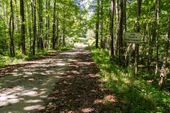 Pennell Road - 1 (MarksPhotoTravels) Tags: bluewallpreserve greenvillecounty southcarolina