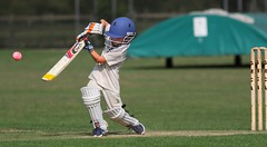 Jacks first go against the hard ball (pjamesarchitecture) Tags: youthcricket kidscricket cricket