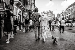walking the dog (Gerard Koopen) Tags: nederland netherlands amsterdam capital city blackandwhiteonly bw noir candid straat street straatfotografie streetphotography dog doglover walkingthedog streetlife people man woman sony sonyalpha a7iii 2018 gerardkoopen gerardkoopenphotography littledoglaughednoiret