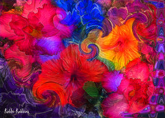 Commotion Motion (brillianthues) Tags: flowers floral flower garden abstract colorful collage photography photmanuplation photoshop