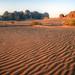 desert waves jordan