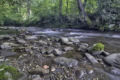 Perception In Nature - Smokemont North Carolina (thepres6) Tags: smokemont northcarolina smokymountains water river rocks trees nature shade