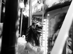 (LV diaphragm) Tags: d3100 fujifilm x30 noir black blanc white street sea mer ocean poitiers la rochelle ile ré oléron island wave vague plage beach sun monochrome rue dance danse hiphop battle basketball dive plongée cat chat gopro pov charlie
