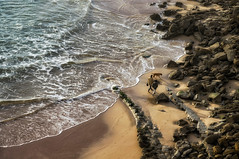 'Three's Company' (Canadapt) Tags: beach rocks waves ocean man woman dog magoito portugal canadapt