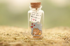 Someone send you a message..I LOVE YOU, Tiny message in a bottle,Miniatures,Personalised gift,Valentine Card,Gift for her/him,Girlfriend gift, birthday card, holiday card and funny card ideas (charles fukuyama) Tags: bear chick polebear handmadecard custommade unique cute art holidaycard homedecor deskdecor glitter lovecard sweet greetingscard paper seasonalcard partygift personalizedgift longdistancegift kikuikestudio tiny anniversarycard