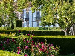 Jardins de la Casa de Mateus (CORMA) Tags: portugal douro mateus europe europa 2015 domaineviticole vilareal palais fundaçãodacasademateus vineyard vignoble jardin garden