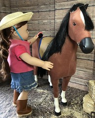 1. Tender Loving Care (Foxy Belle) Tags: doll horse american girl barn dollhouse 14 18 inch ag wooden hay miniature diorama scene room saige penny brush