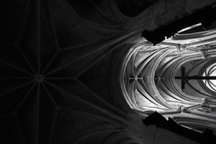 0252 (thebigkids) Tags: architecture architecturephotography church cross vault black white bw bwlover blackandwhite blacknwhite mono monotone monochrome light dark darkness minimal minimalism leicasl leica bnwminimalismmag bigkids lyon