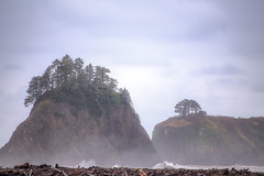 IMG_4252_Seattle (Alex Hsieh (椰子人)) Tags: ç´è² seattle canon canon6d 2016 fall thanksgiving wa washingtonstate olympus olympicnationalpark national nationalpark nps 6d