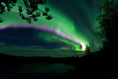 090918 - The Aurora erupts out of the NE just after 10pm (Nathan A) Tags: aurora auroraborealis northernlights alaska salcha interioralaska nightphotography ak autumn fall salchariver noctophotography alaskanature