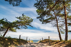 path to the beach (Felix Ott) Tags: rügen baabe ostsee balticsea strand beach bäume trees sand wolken clouds mecklenburgvorpommern
