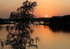 Last evening of the season, Dragsfjärd, Finland, Septemeber 2018 (Juha Riissanen) Tags: dragsfjärd finland archipelagosea sunset baltic summer birch sea evening orange island reflection sky