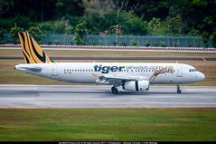 [SIN.2015] #Tiger.Airways #TR #Airbus #A320 #9V-TAE #awp (CHRISTELER / AeroWorldpictures Team) Tags: tiger airways airbus a320200 cn 2724 reg 9vtae eng v2500 history aircraft first flight under test fwwbg built site toulouse lfbo france delivered tigerairways tr tgw config cabin y180 tigerair scoot wfu stored kul sold bankofamerica eiggd orange2fly otf sxods named odysseus lease tuiairlinesbelgium tb jaf a320 plane aircrafts airplane asian airlines airport asia singapore sin wsss changi planespotting nikon d300s nikkor 70300vr raw aeroworldpictures awp chr 2015