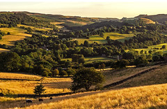 Sun-kissed (Wildlife & Nature Photography) Tags: peakdistrict nationalpark england unitedkingdom sunset goldenlight canon nature outdoors hathersage village valley hills travel scenic canon600d landscapephotography