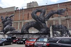 roa (Luna Park) Tags: cdmx mexico mexicocity df streetart mural production lunapark roa eagle snake parking lot