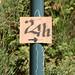 24hBoisHarel-alter1fo (15)