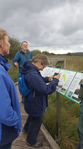 IRWC visit to Pollardstown Fen Ramsar site, September 2018