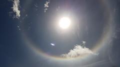 Halo Solar (sileneandrade10) Tags: sileneandrade solarhalo sol halo céu fenômenonatural samsungsmg930f samsung