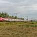 Lisse Thalys TGV-PBKA 4346 trein 9334 Paris-Nord