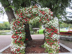 Floral Arch (jamica1) Tags: floral arch flowers decorative salmon arm shuswap bc british columbia canada