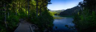 Deer Lake Footbridge
