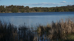across the lake to the University of Canberra Teaching hospital (spelio) Tags: act canberra australia