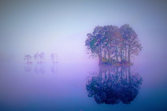 Autumn Lake morning mist (chikaraamano) Tags: mist silence autumn peak colorfull lake water forest tree mountain plateau beautifully delicious air purana attractive characteristics magical charmed dawn pale savor haze nature outdoor