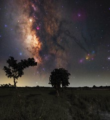 To the Stars and Beyond (ibtihajtafheem) Tags: milkyway urbanmilkyway milkywayphotography milkywaychasers milkywaychaser astroworld astrography astronight astro astronut astrophotography astronomy astronomers astrophotographers photography photographylove photographs photo dayphoto photographylife nightphoto photos nightphotography nightmare night nightscape nightscaping nightshooters nightcolors nightshot nightsky nightshooterz nightscaper nightshots shooterz shoot stars billionstars star naturelover naturelovers naturephotography natureporn bangladesh bangladeshi flickr sky tree field richfield bluehour evening moonnight