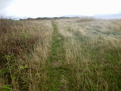 Sully Island n (Dugswell2) Tags: sullyisland p21 tidalisland wales siblet caton