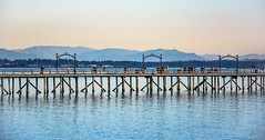 'Pier' and simple (Christie : Colour & Light Collection) Tags: straitofgeorgia surrey bc canada whiterockpier southsurrey britishcolumbia metrovancouvericon icon pier wharf pacificocean beach seashore shoreline blue water scenic calm walkway boardwalk pierpilons pilings pylons pilons fence railing lowermainland greatervancouver strollers strolling stroll walking people foottraffic reflections reflection idyllic whiterock