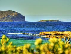 Looking over the vegetation (elphweb) Tags: hdr highdynamicrange nsw australia coast coastal seaside sea ocean beach water