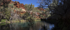 Karijini_Ferns Pool panorama