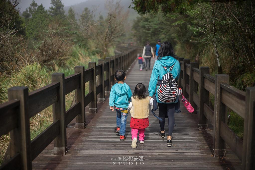 太平山翠峰湖環山步道 |走在泥濘的道路上,只為途中美景 | 宜蘭大同鄉7