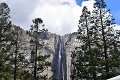 Small waterfall (Randy Gardner 88) Tags: yosemite yosemitenationalpark california nationalparkservice nationalparksamericasbestidea trees mountains granite cliffs waterfalls waterfall merced mercedriver yosemitevalley may2016 2016