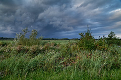 Before the rain (Julysha) Tags: twiske rain sky september autumn dxo thenetherlands noordholland grass green field nature d850 sigma241054art tiffenhtndgrad nikon