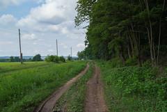 *** (PavelChistyakov) Tags: ua ukraine trip road village nature landscape countryside farm forest sony dslr alpha digital raw rpp lightroom