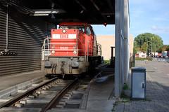 Shunter (lex_081) Tags: db cargo ns 6520 rotterdam zuid waalhaven shunter 20180915