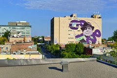 Montreal's Plateau District's Large Leonard Cohen Mural (@mjmantis Montreal Urban Photos) Tags: montreal graffitiart quebec urbanart mtl streetart rooftop urban cityview cityscape canada citylife