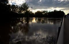 IMG_5249.CR2 (jalexartis) Tags: fayetteville fayettevillenc fayettevillenorthcarolina aftermath capefearriver hurricaneflorence crest rivercrest