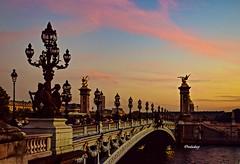 O Sena e detalhes da Ponte Alexandre III, Paris - FR! (jvaladaofilho) Tags: cenasurbanas cityscape streetview streetphotography france paris alexandreiii valadaoj