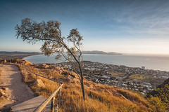 Townsville 06.00 am (Herzog Theo) Tags: townsville magnetic island tree sunrise morning sun