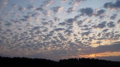 Sunrise on 08/30/2018 in the city of Lebedin. Ukraine. (ALEKSANDR RYBAK) Tags: восход солнце рассвет утро солнечный свет лучи небо облака лес поле лето погода сезон облачно природа пейзаж атмосфера sunrise sun dawn morning solar shine beams sky clouds forest field summer weather season cloudy nature landscape atmosphere