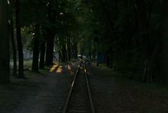P1170656a_1 (superka_01) Tags: львов lvov landscapephotography cityscape park parks