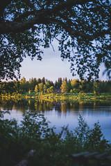 Midsummer18-42 (junestarrr) Tags: summer finland lapland lappi visitlapland visitfinland finnishsummer midsummer yötönyö nightlessnight kemijoki river