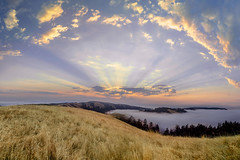 Island In the Sky (rootswalker) Tags: sunrise beams lightbeams fog monsoonclouds santacruzmountains california redwoods bayarea