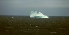 Paamiut Greenland Iceberg (sobergeorge) Tags: deepnorth greenland paamiut sobergeorge vov2018 msrotterdam voyageofthevikings geotag gps greenlandiceberg bysobergeorge summercruise