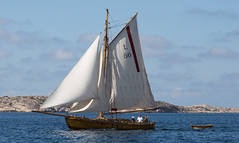 A wooden classic (Per-Karlsson) Tags: koster sailboat sail sailing wooden woodenboat madeofwood gaffrigged bohuslän sweden swedishwestcoast